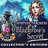 Mystery Trackers: Blackrow's Secret game